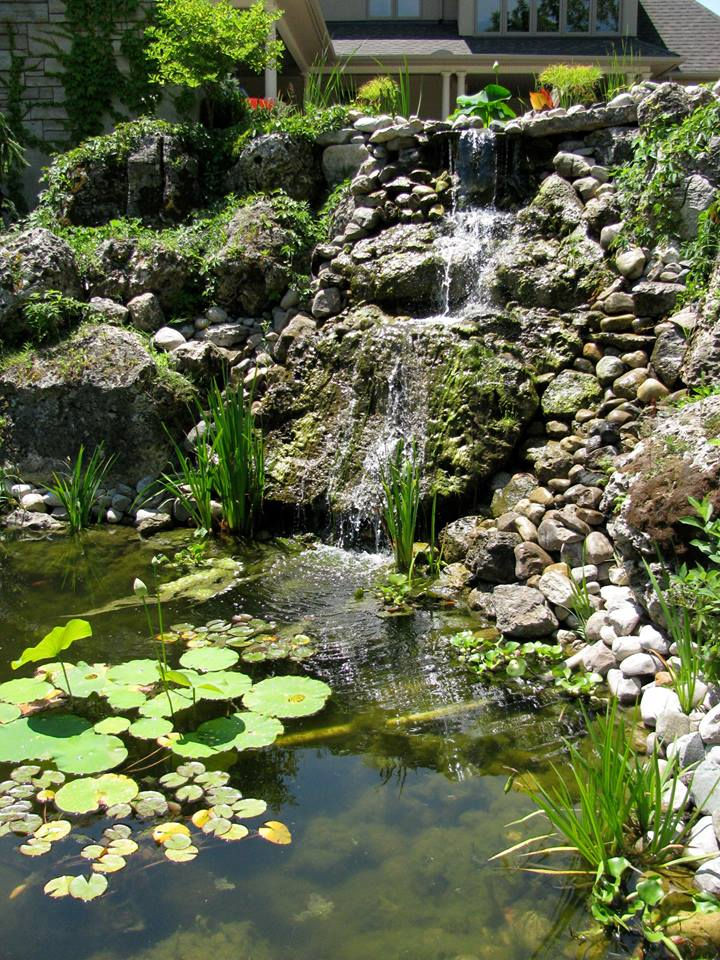 beautiful maintained pond waterfall