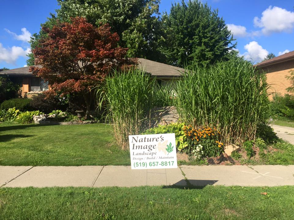 nature's image landscape design - build - maintain