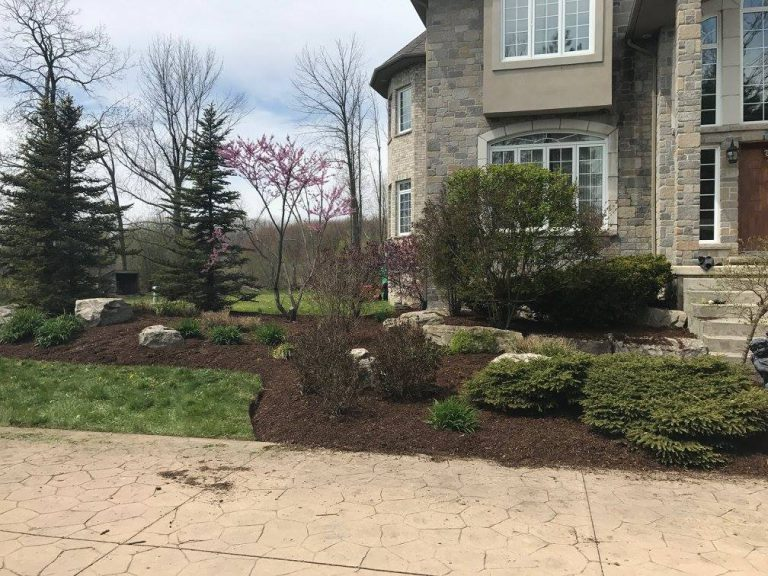 building garden in london ontario