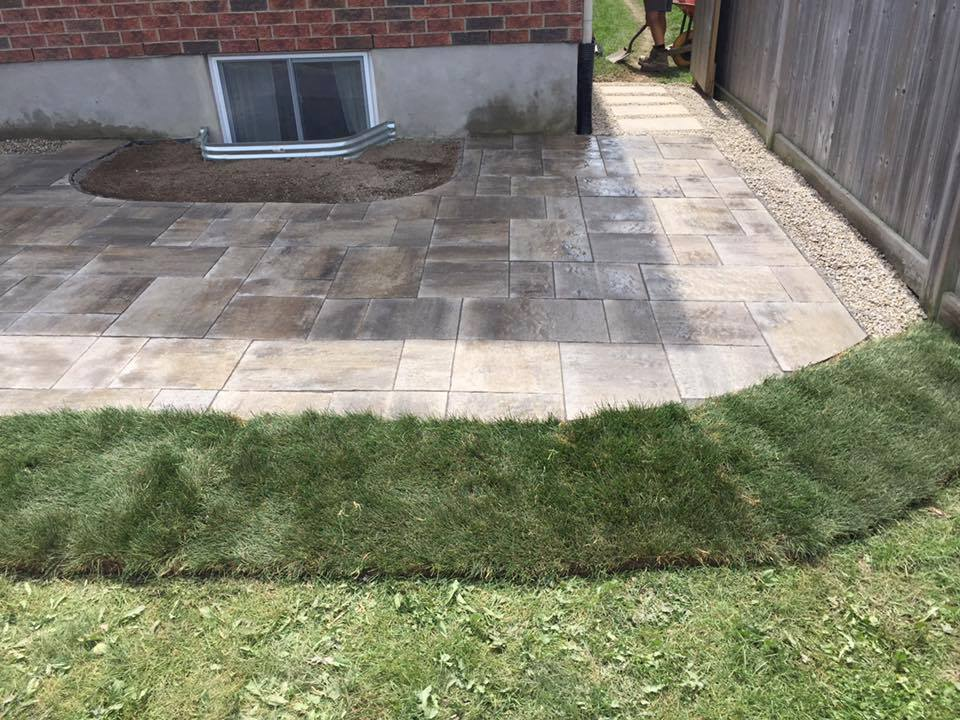 backyard patio new grass