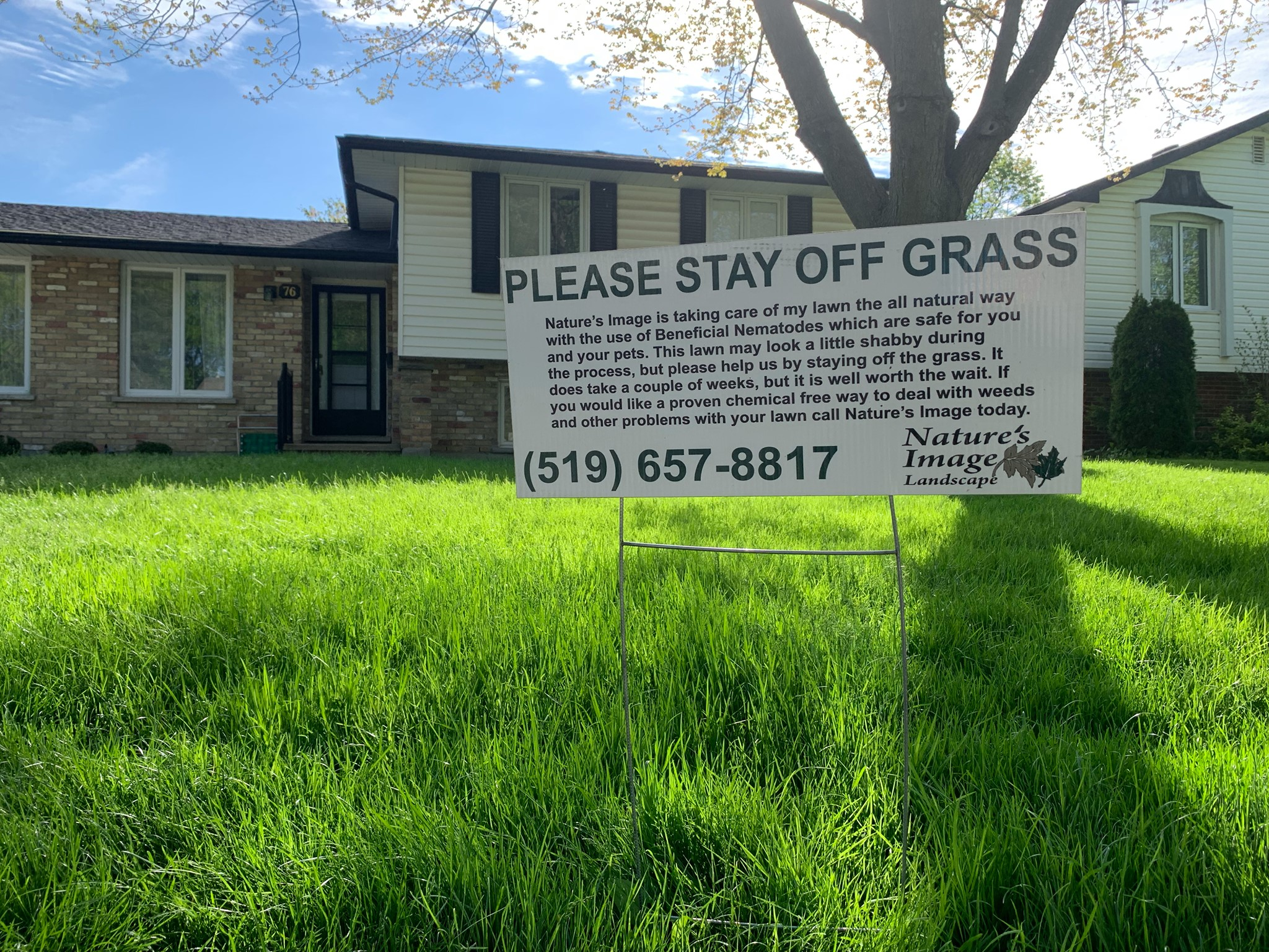 pest free lawn london ontario